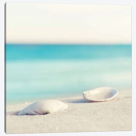 Serenity Canvas Print #ICS136} by Carolyn Cochrane Art Print