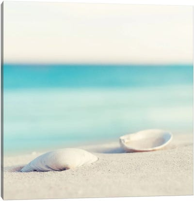 Serenity Canvas Print #ICS136