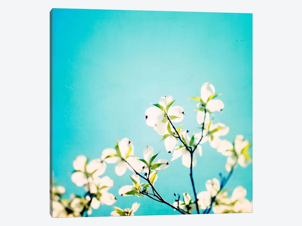 Skies of Blue by Carolyn Cochrane 1-piece Canvas Wall Art