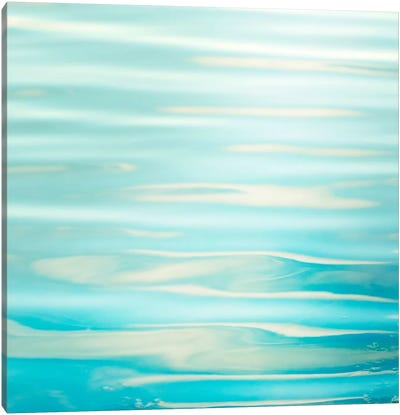Soothing Canvas Art Print