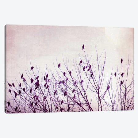 The Pause that Refreshes Canvas Print #ICS145} by Carolyn Cochrane Canvas Wall Art