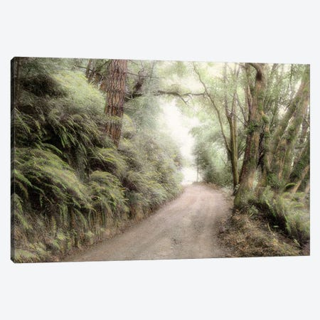 Lost Coast Road Canvas Print #ICS148} by Laura Culver Canvas Art Print