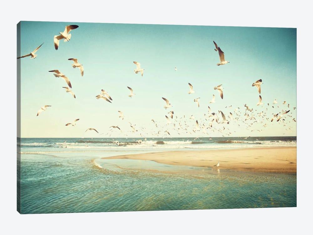 Freedom by Carolyn Cochrane 1-piece Canvas Art