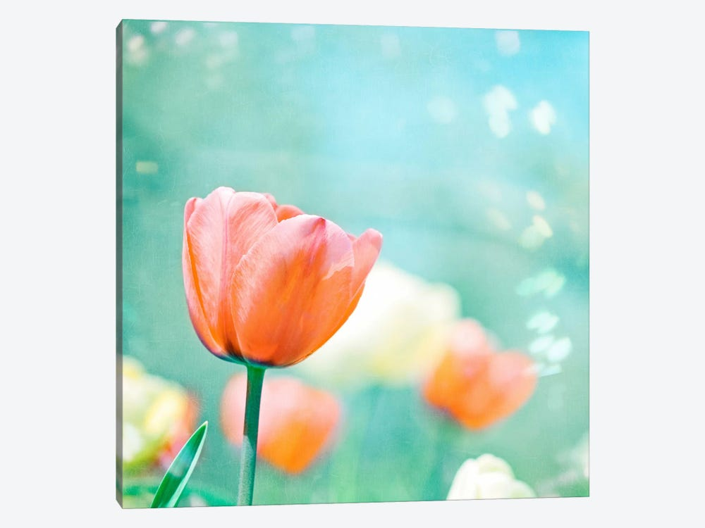 Garden of Dreams 1-piece Canvas Print