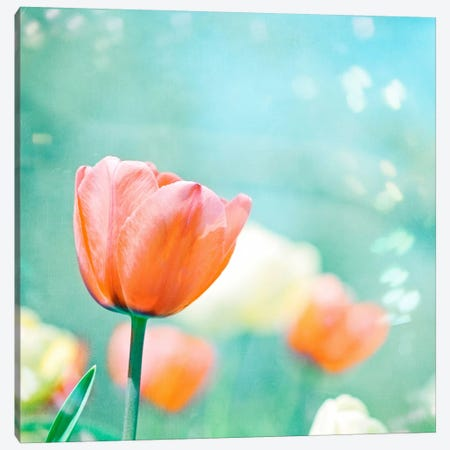 Garden of Dreams Canvas Print #ICS162} by Carolyn Cochrane Canvas Print