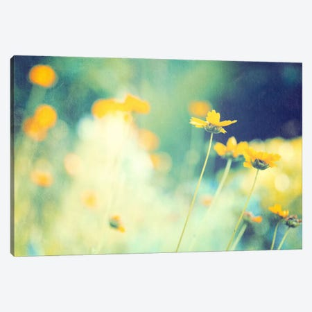 In the Meadow Canvas Print #ICS164} by Carolyn Cochrane Canvas Artwork