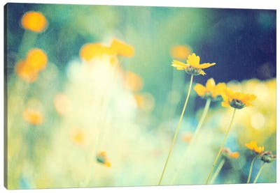 In the Meadow Canvas Art Print