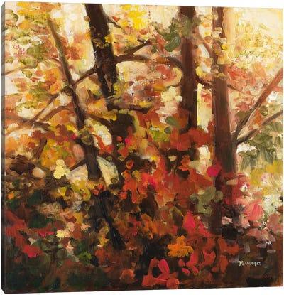Backlit Leaves III Canvas Art Print