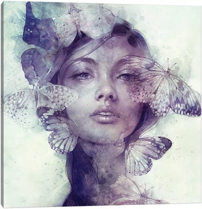 Adorn by Anna Dittmann Canvas Artwork