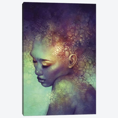 Camouflage Canvas Print #ICS187} by Anna Dittmann Canvas Wall Art