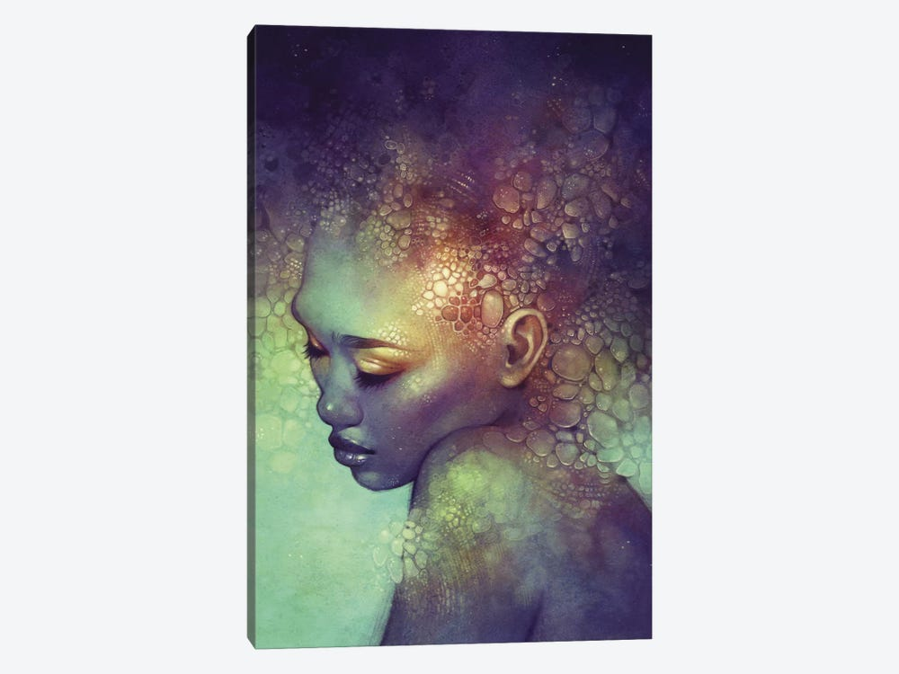 Camouflage by Anna Dittmann 1-piece Canvas Wall Art