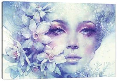 December Canvas Art Print