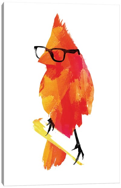 Punk Bird Canvas Art Print
