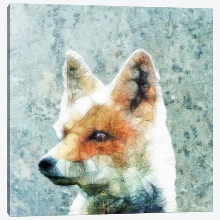 Abstract Fox Canvas Print #ICS19} by Ancello Canvas Wall Art