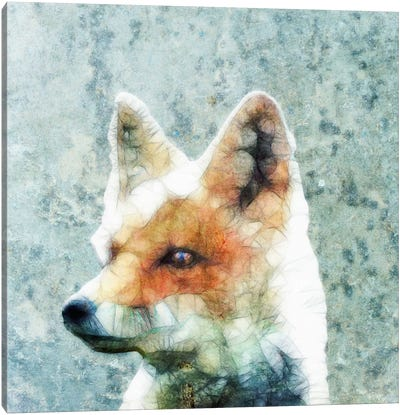 Abstract Fox Canvas Art Print