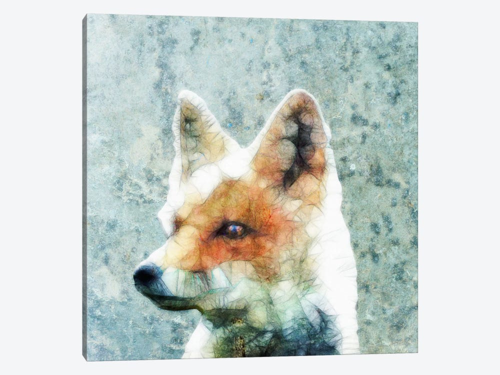 Abstract Fox by Ancello 1-piece Canvas Art