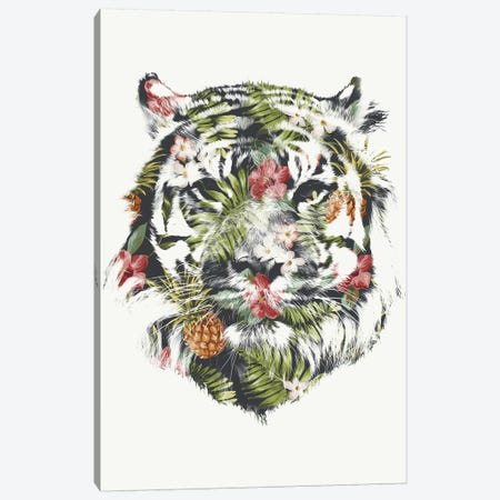 Tropical Tiger Canvas Print #ICS205} by Robert Farkas Canvas Print