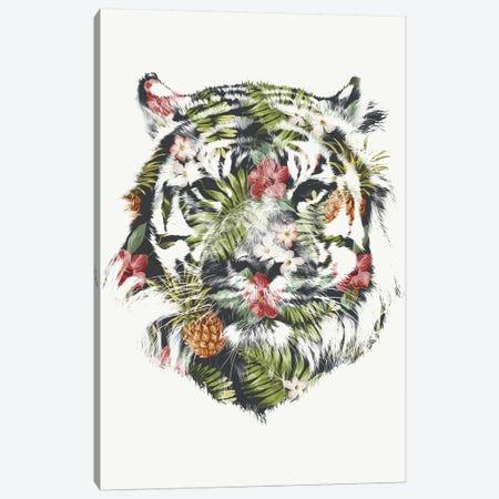 Tropical Tiger Canvas Print #ICS205} by Robert Farkas Canvas Print