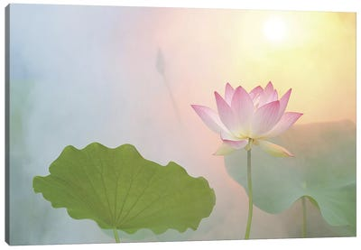 Serenity Canvas Art Print