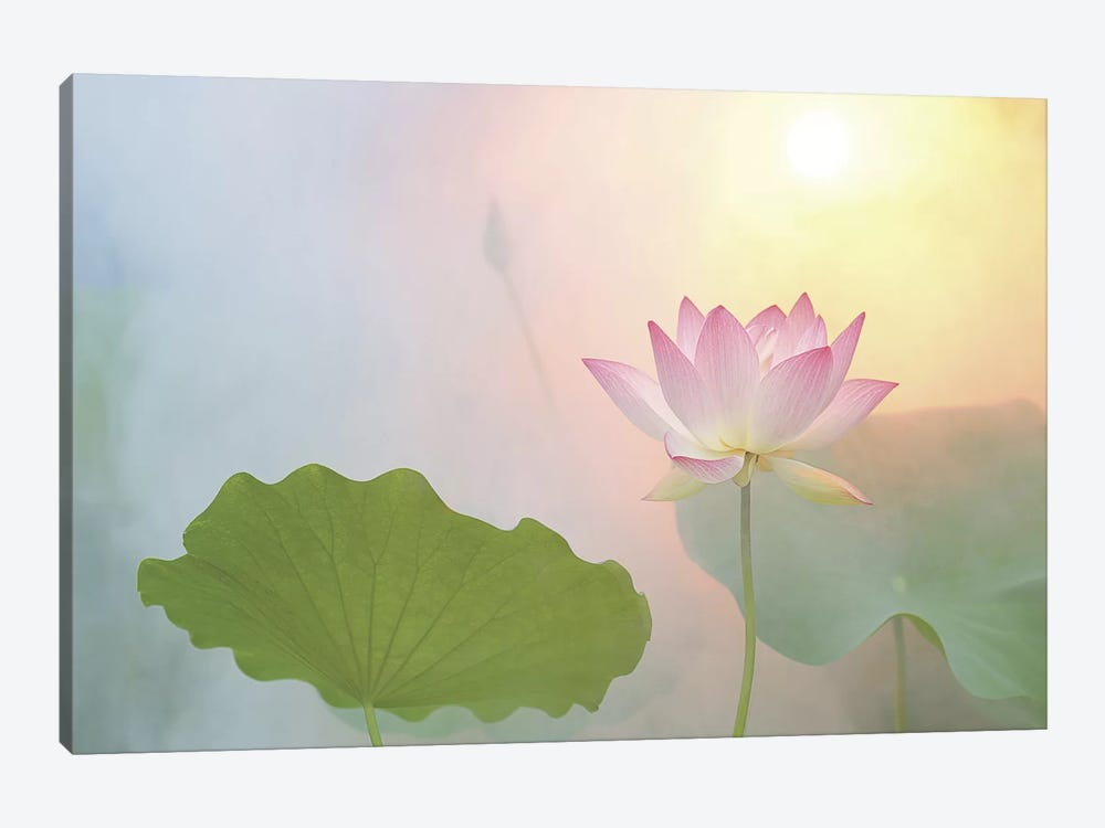 Serenity by Bahman Farzad 1-piece Canvas Art