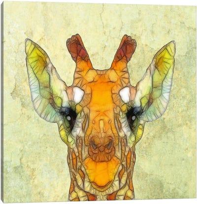 Abstract Giraffe Calf Canvas Print #ICS20