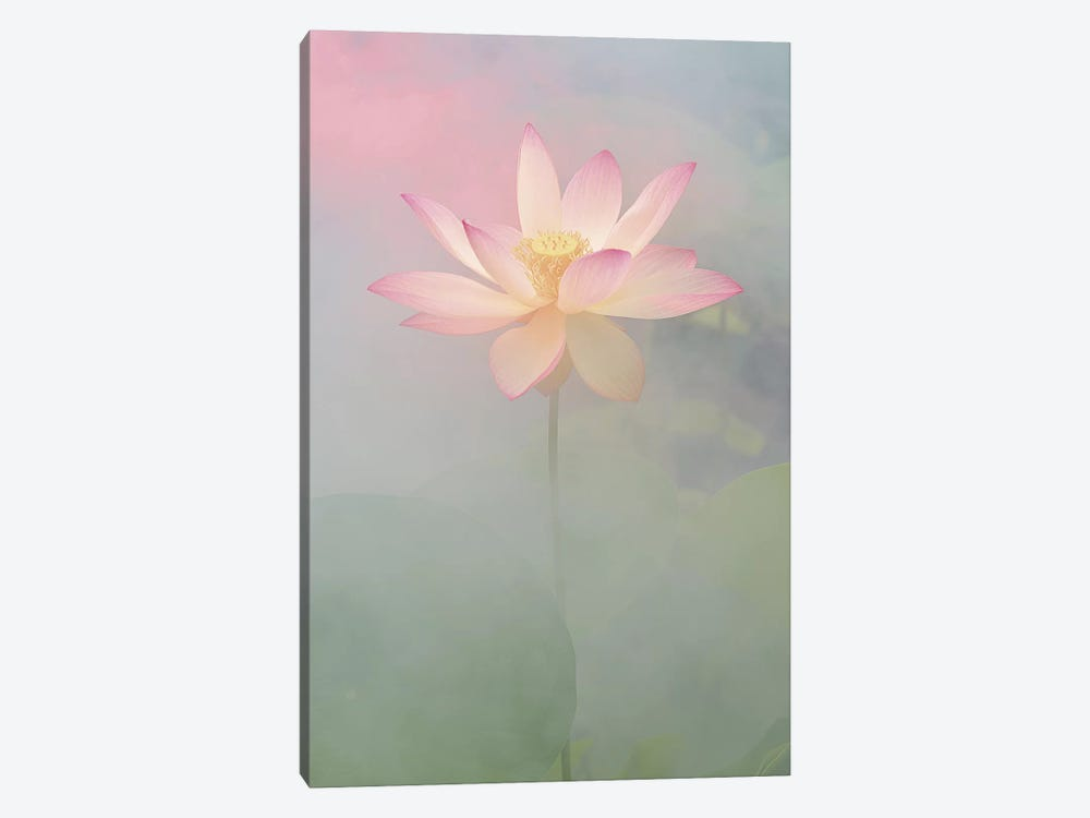 Pink Passion by Bahman Farzad 1-piece Canvas Wall Art