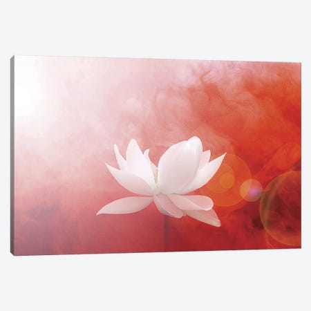 Lotus in Flames Canvas Print #ICS213} by Bahman Farzad Canvas Art Print