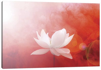 Lotus in Flames Canvas Art Print