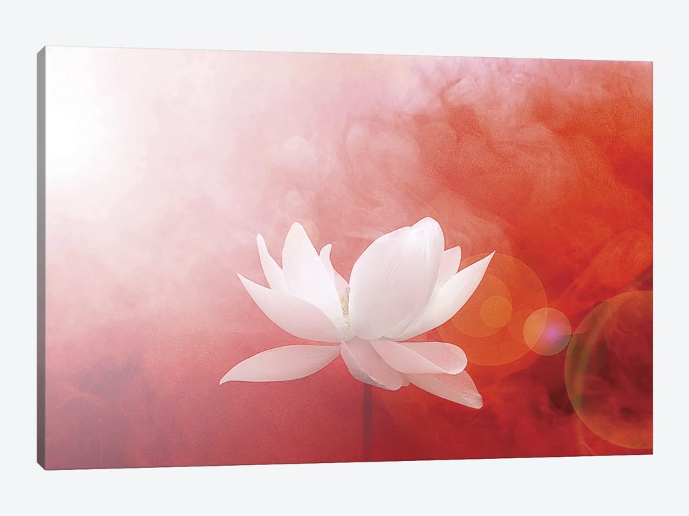 Lotus in Flames by Bahman Farzad 1-piece Canvas Print