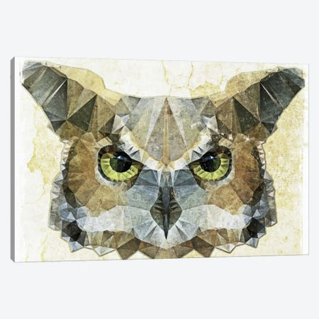 Abstract Owl Canvas Print #ICS21} by Ancello Canvas Art Print