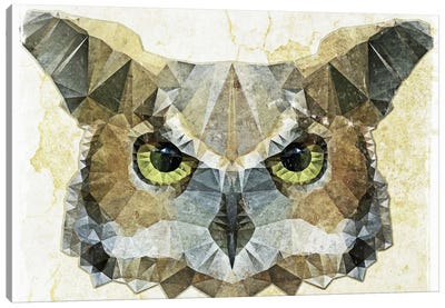 Abstract Owl Canvas Art Print