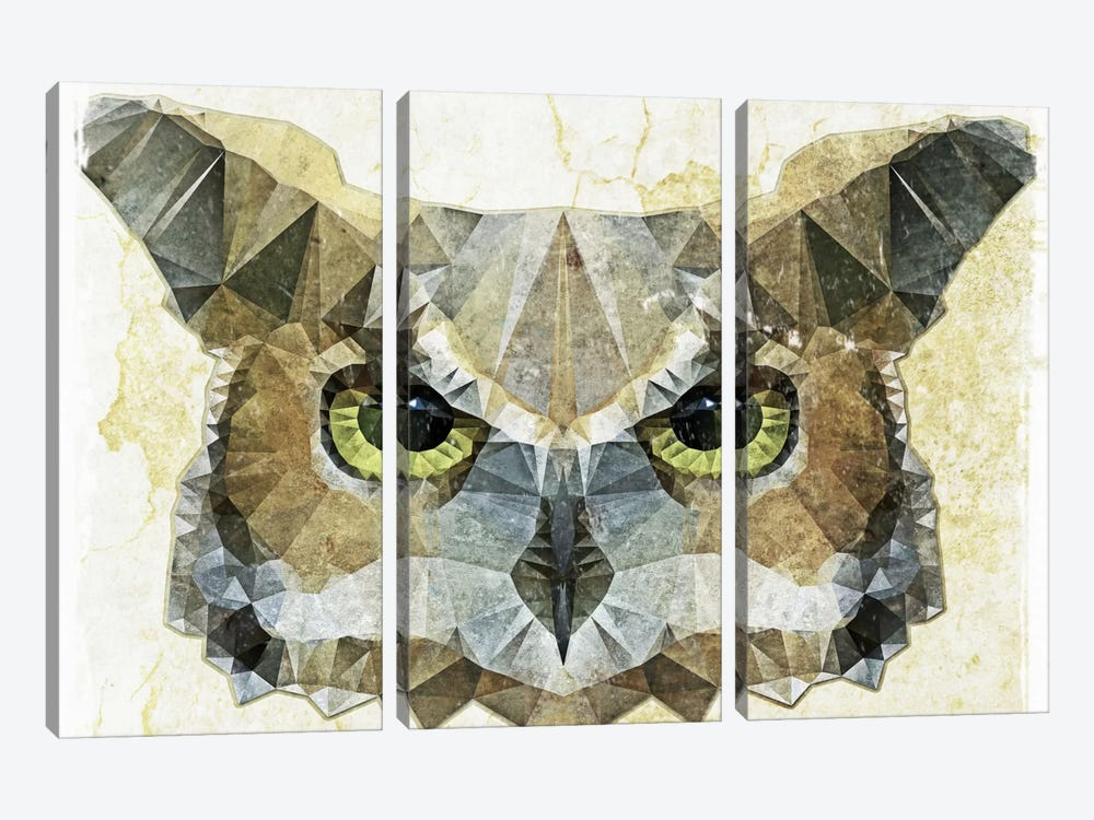 Abstract Owl by Ancello 3-piece Canvas Art Print
