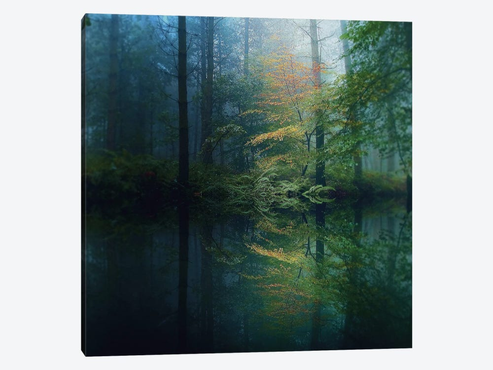 The Forest 1-piece Canvas Art Print