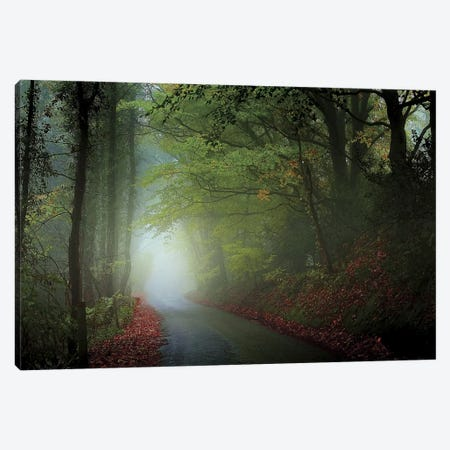The Lane Canvas Print #ICS221} by Adelino Goncalves Canvas Artwork