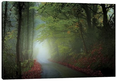 The Lane Canvas Art Print