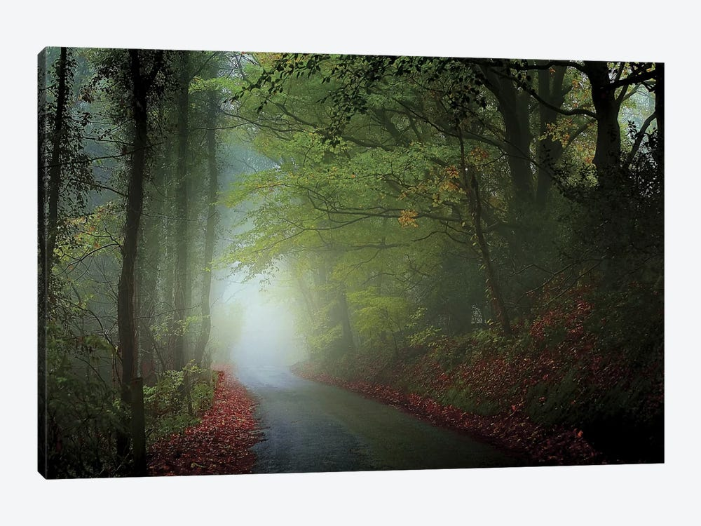 The Lane by Adelino Goncalves 1-piece Canvas Artwork