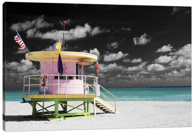 A Day at the Office Canvas Art Print