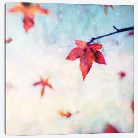 All Fall Down Canvas Print #ICS252} by Dawn D. Hanna Canvas Print