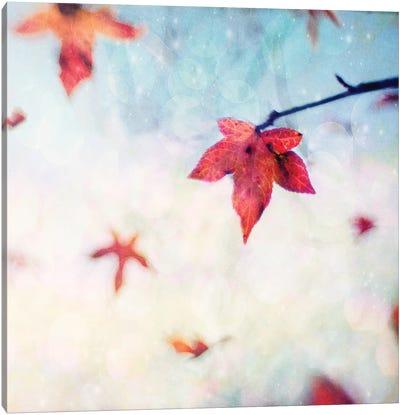 All Fall Down Canvas Art Print