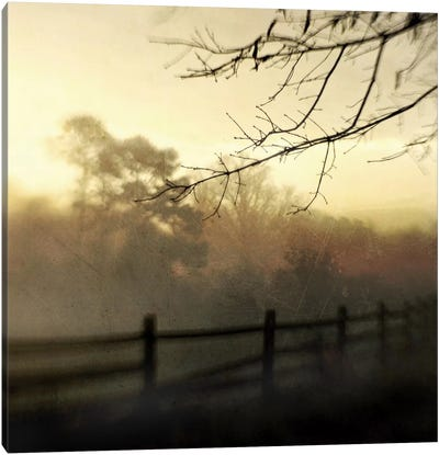 At Dawn Canvas Art Print