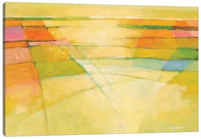 Through the Mist Canvas Art Print