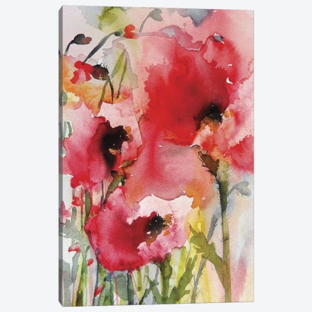Summer Poppies Canvas Print #ICS274} by Karin Johannesson Canvas Art