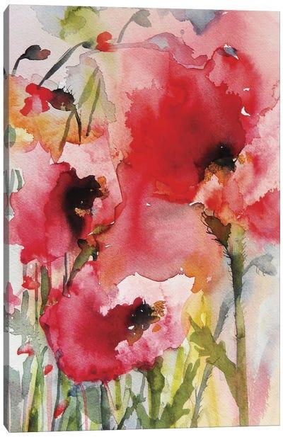 Summer Poppies Canvas Art Print
