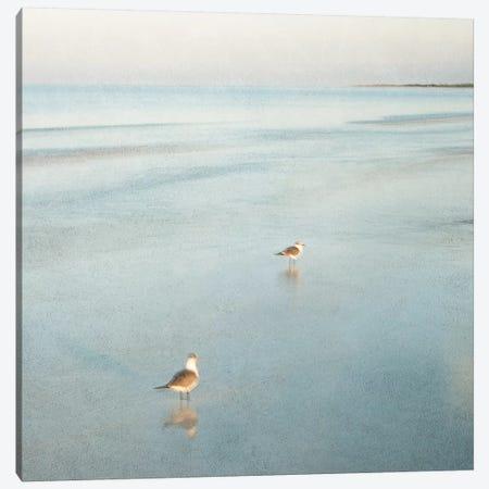 Two Birds on Beach Canvas Print #ICS280} by John Juracek Canvas Art
