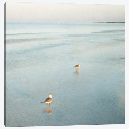 Two Birds on Beach Canvas Print #ICS280} by John Juracek Canvas Art