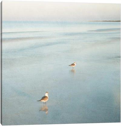Two Birds on Beach Canvas Print #ICS280