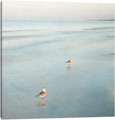 Two Birds on Beach Canvas Art Print