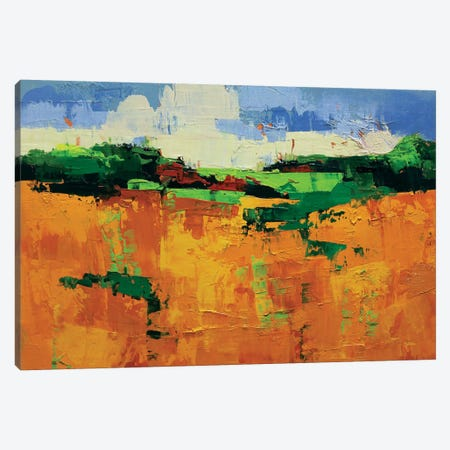 Field 960 Canvas Print #ICS343} by Chance Lee Art Print