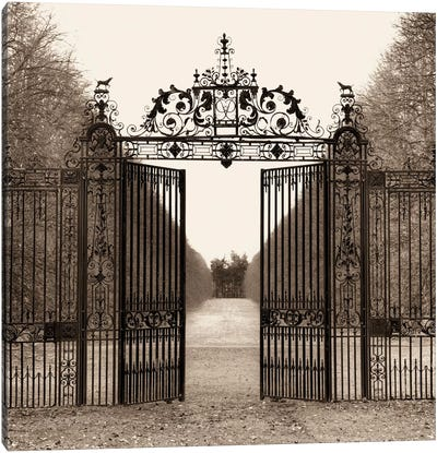 Hampton Gate by Alan Blaustein Canvas Print