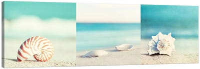 Paradise Triptych Canvas Print #ICS3HSET004